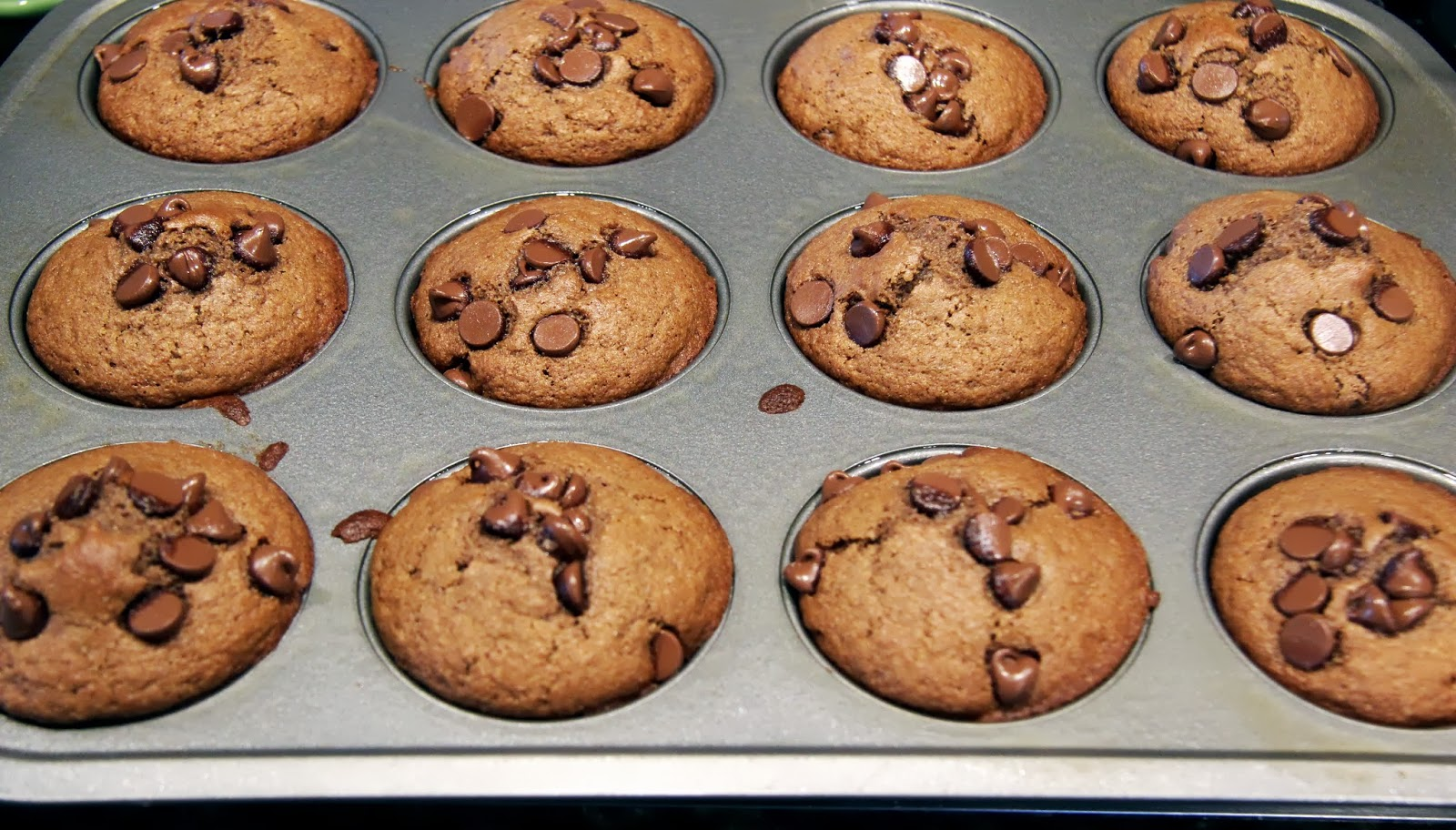 Chocolate Chocolate Chip Muffins - Auntie Chatter